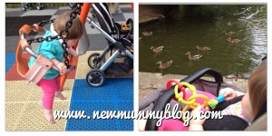 Newmummyblog ducks and swings at the park