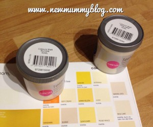 New mummy blog new home paint testers