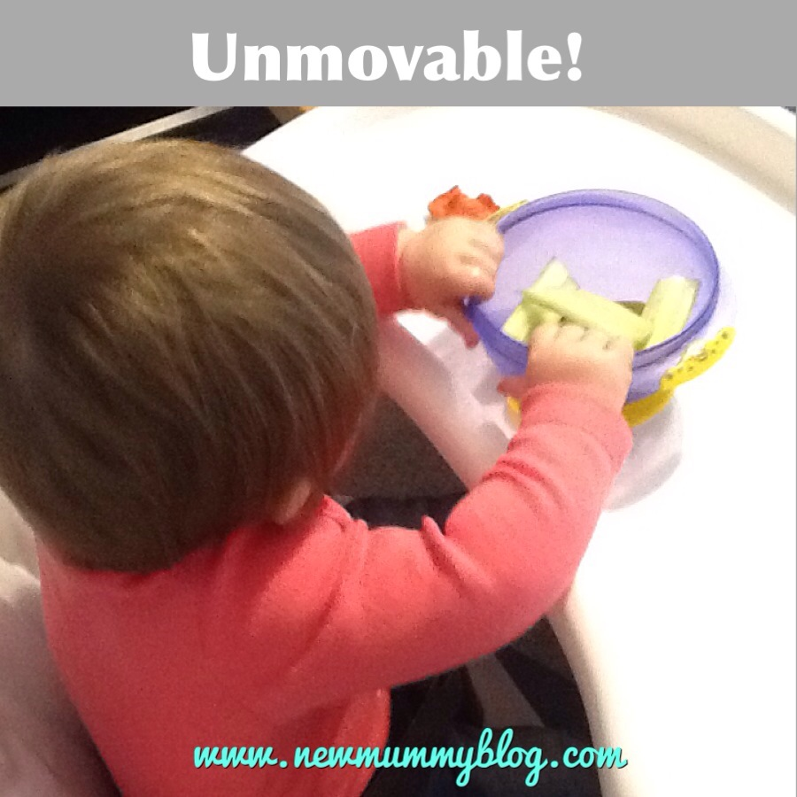 new mummy blog suction bowls