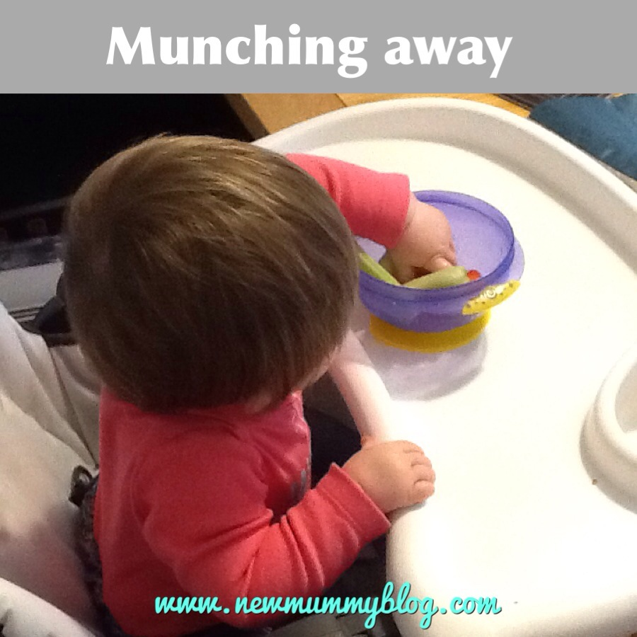new mummy blog suction bowls review