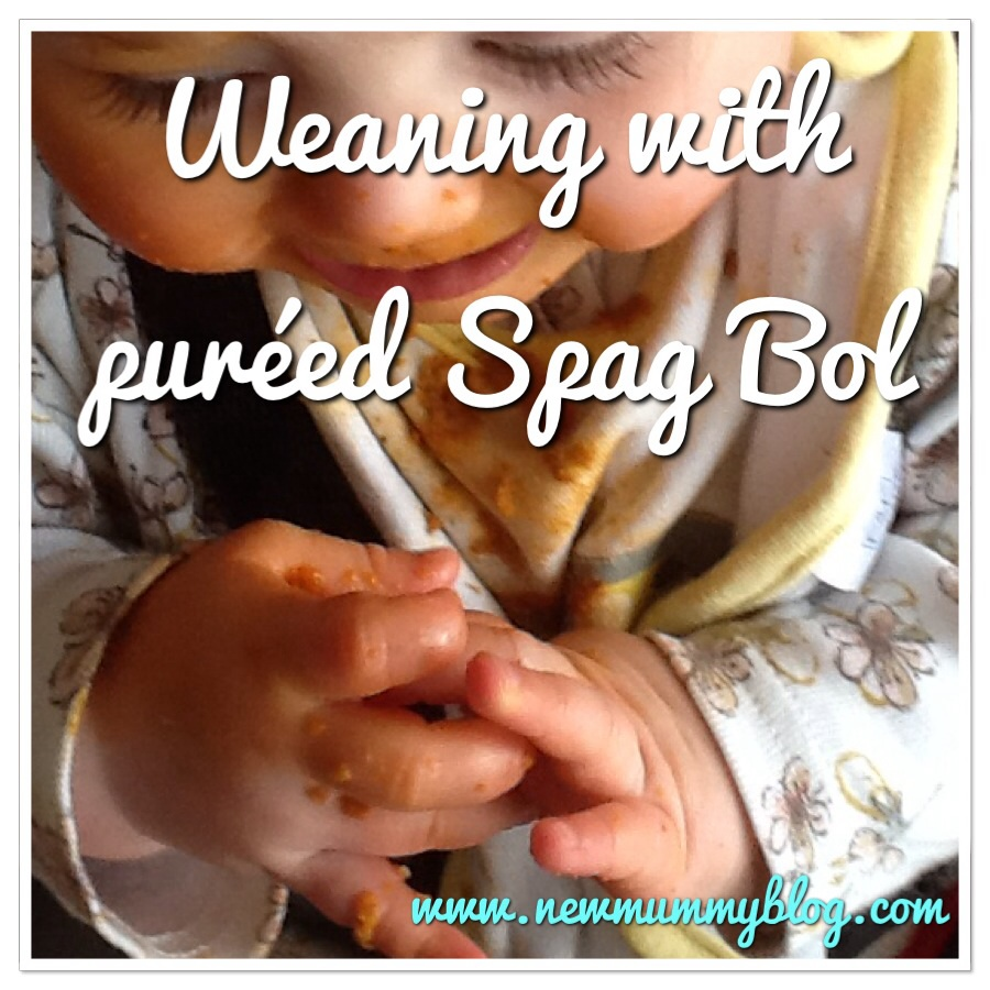 New mummy blog things parents say when weaning spag bol