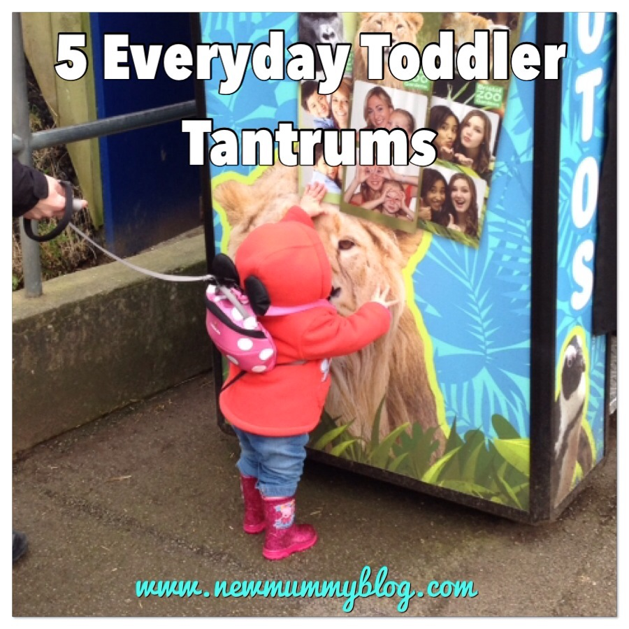everyday toddler tantrums picture from visit to bristol zoo