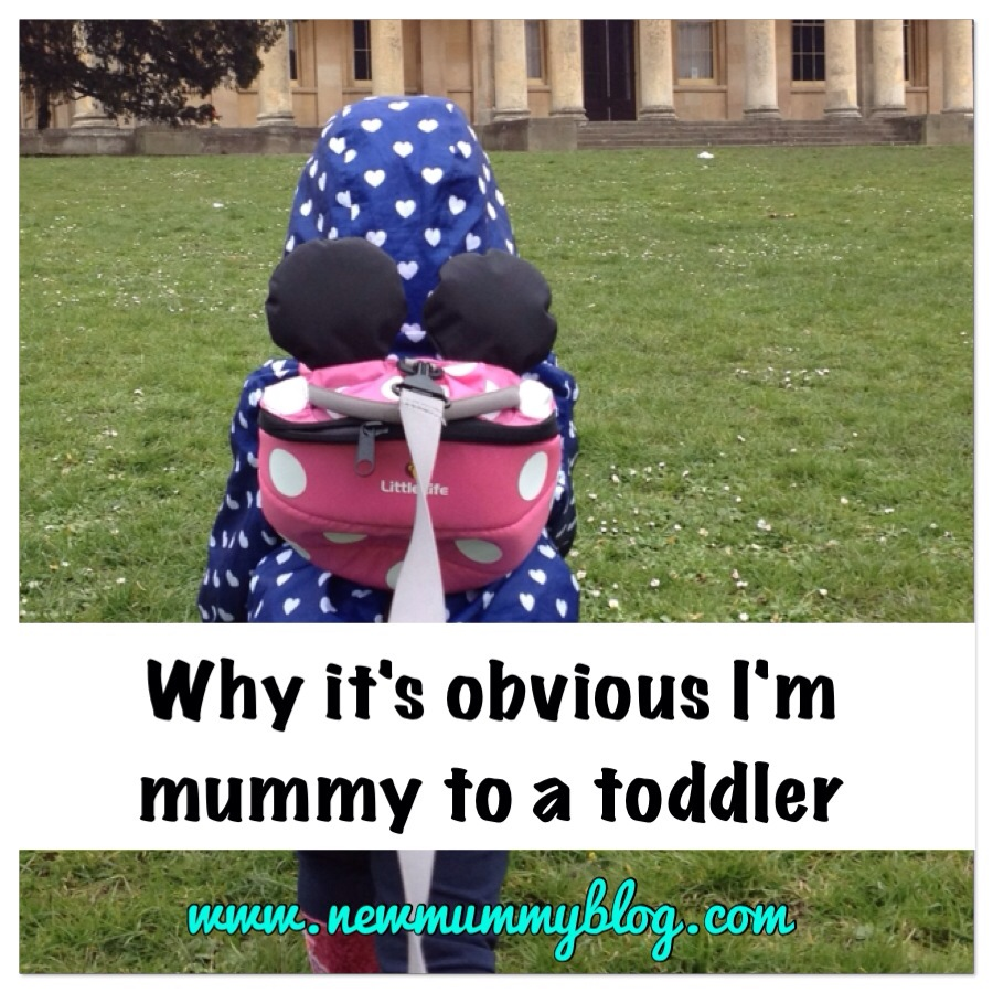 Why it's obvious i'm mummy to a toddler by new mummy blog