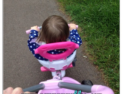 SmarTrike a toddler essential