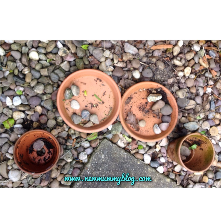 Pebble sorting using plant pots and saucers