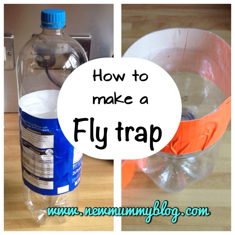 make a fly trap or three new mummy blog. Black Bedroom Furniture Sets. Home Design Ideas