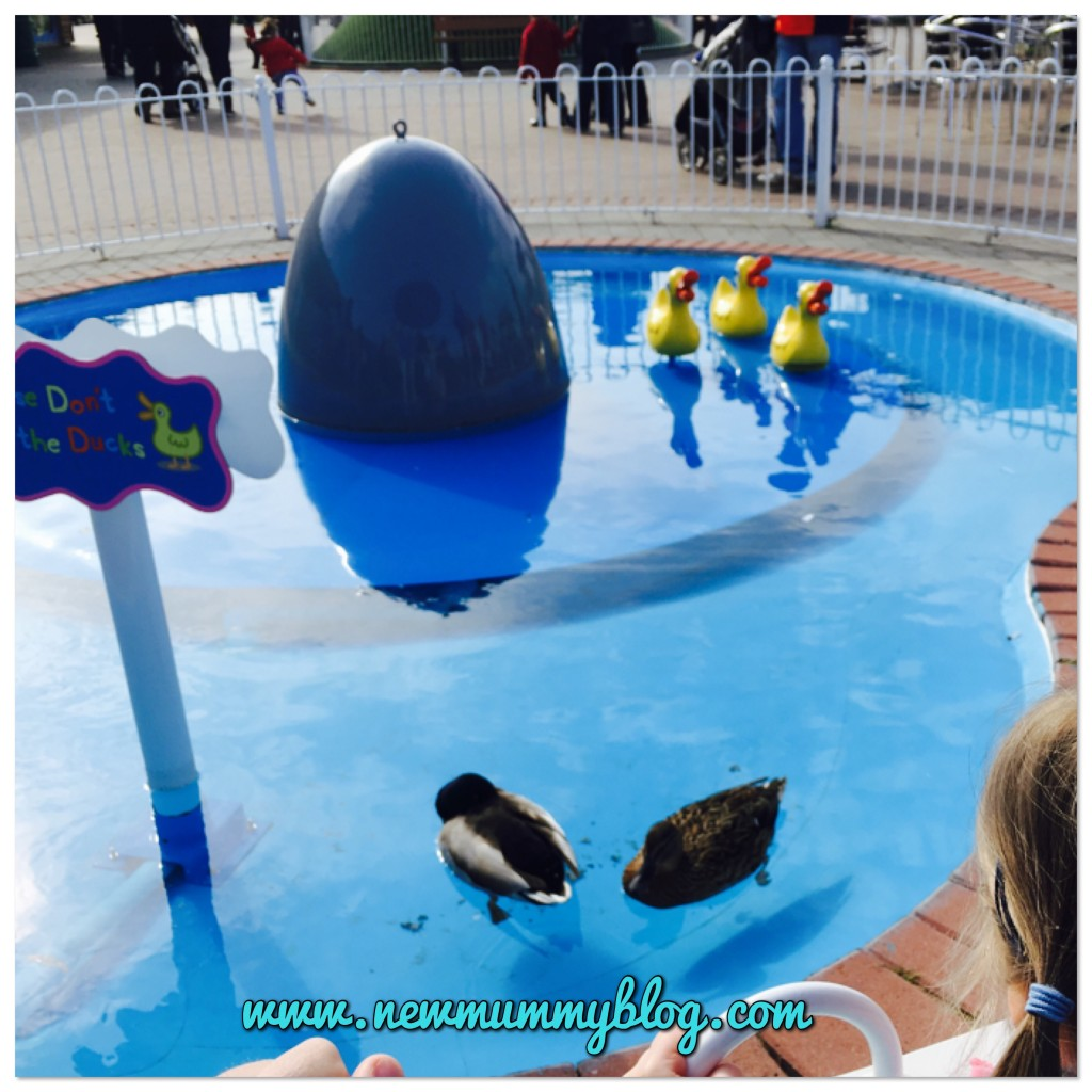 Peppa Pig World Review Southampton - our family day out with two year old - real ducks in the Peppa Duck Pond