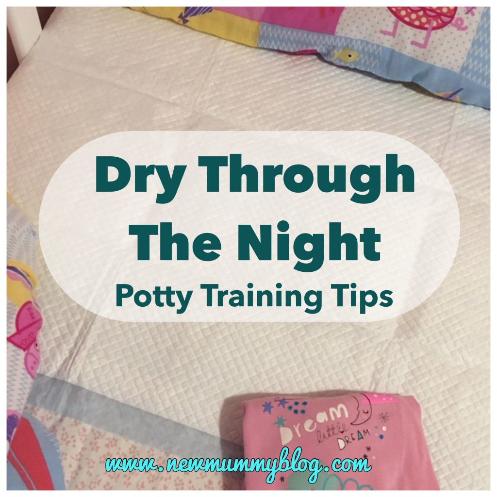 Potty Training Dry At Night - Potty Training Tips