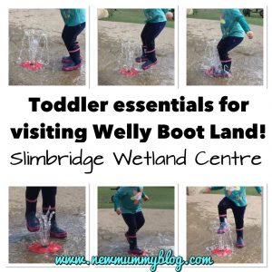 Slimbridge with a toddler - Toddler Welly Boot Land What to take with you