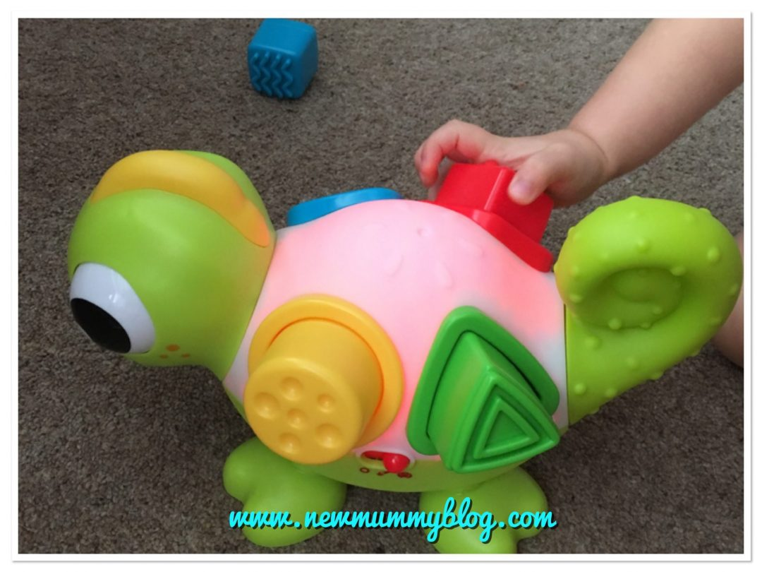 shape sorter by bkids infantino