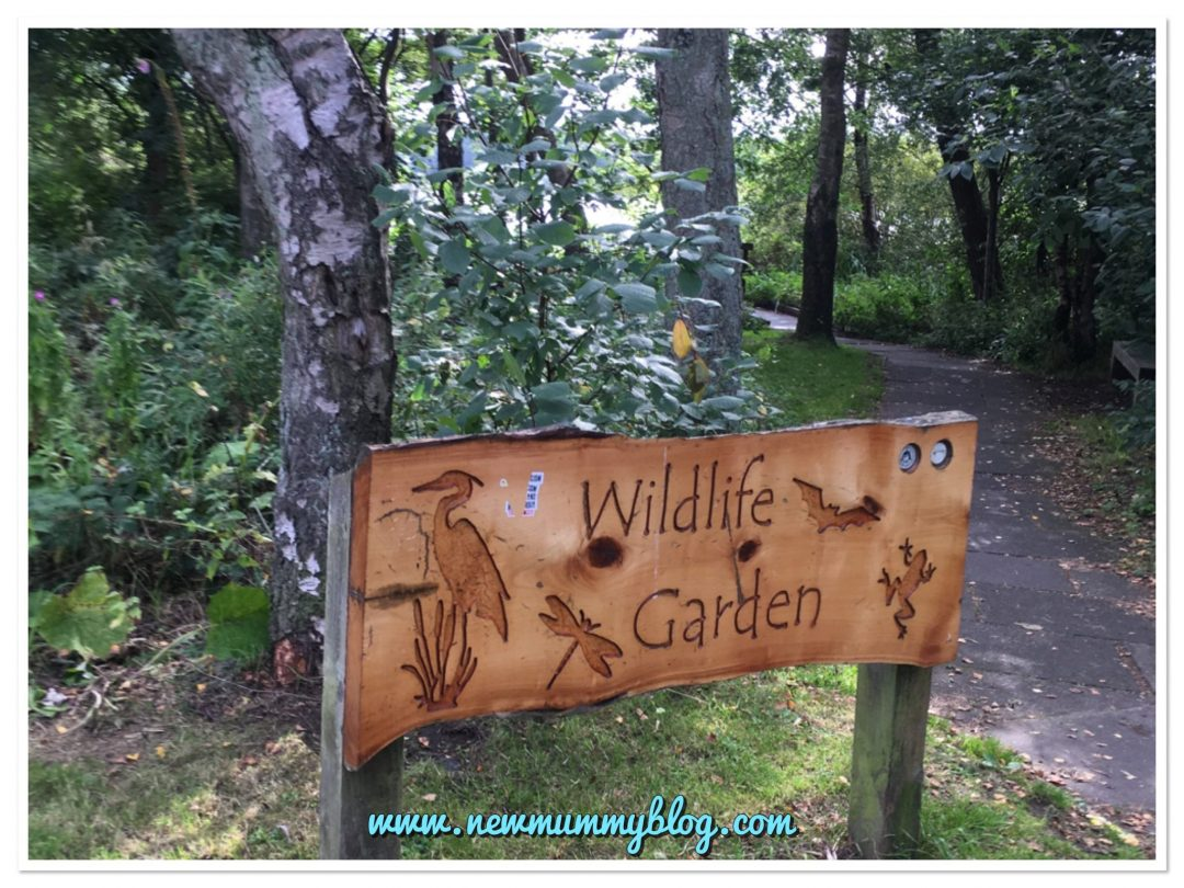 Days out with kids Glasgow Drumpellier Country Park wildlife garden