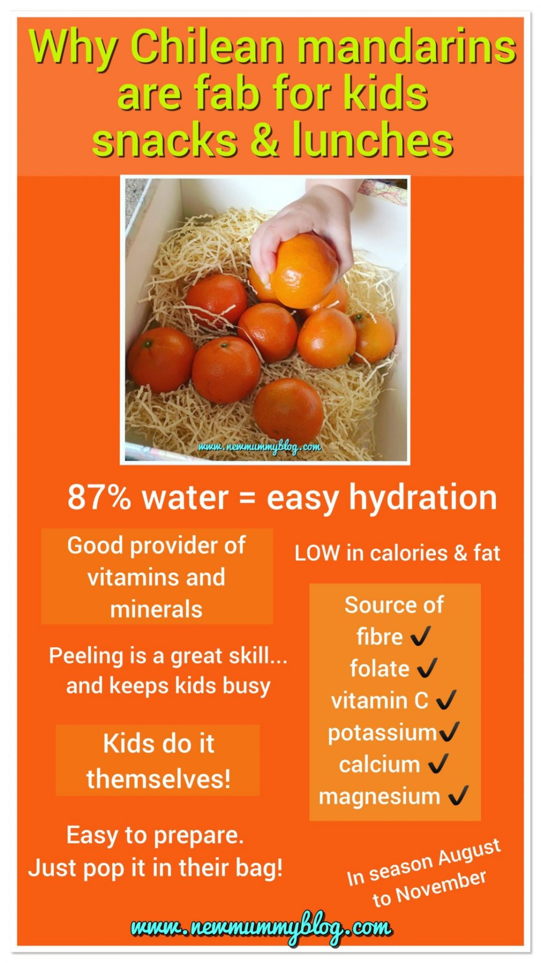 Why Chilean mandarins are perfect for kids lunches and toddler snacks BritMums challenge #chileaneasypeelers infographic