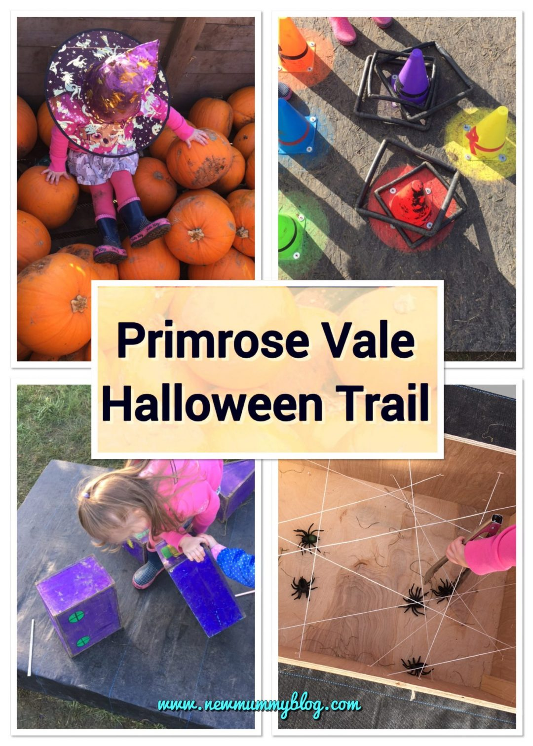Primrose Vale Halloween Trail Cheltenham Days out and things to do Gloucestershire