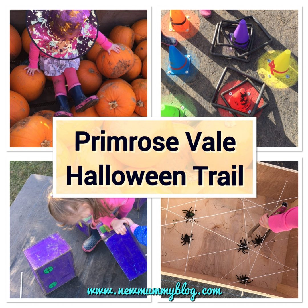 Primrose Vale Halloween trail review 2017 - new Mummy Blog days out pumpkins Cheltenham Gloucestershire