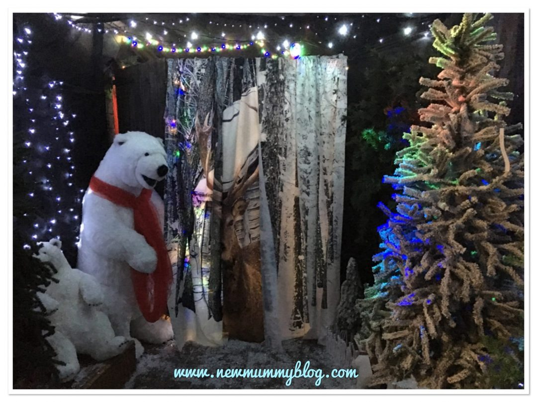 Winter wonderland at Highfield garden centre Gloucester/cheltenham -  Christmas activity advent calendar - alternative advent calendar ideas for toddler