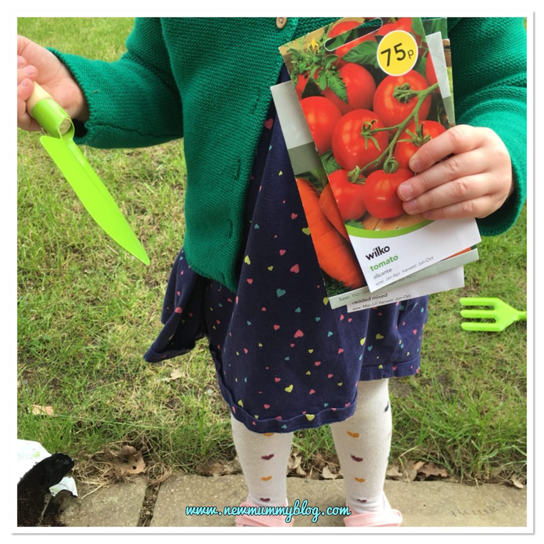 Gardening with a 3 year old, holding her spade, and seeds