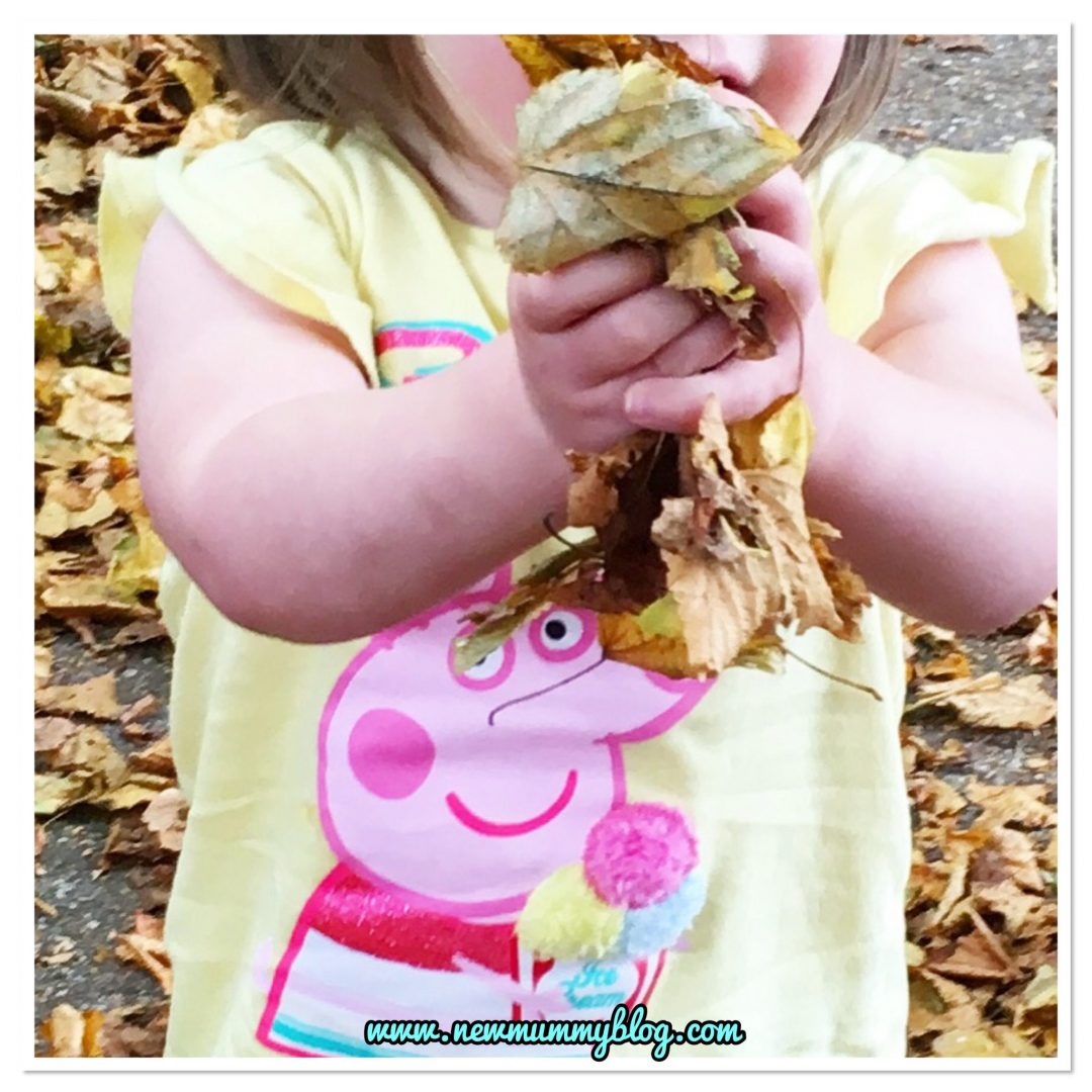 15 month old discovers autumn leaves