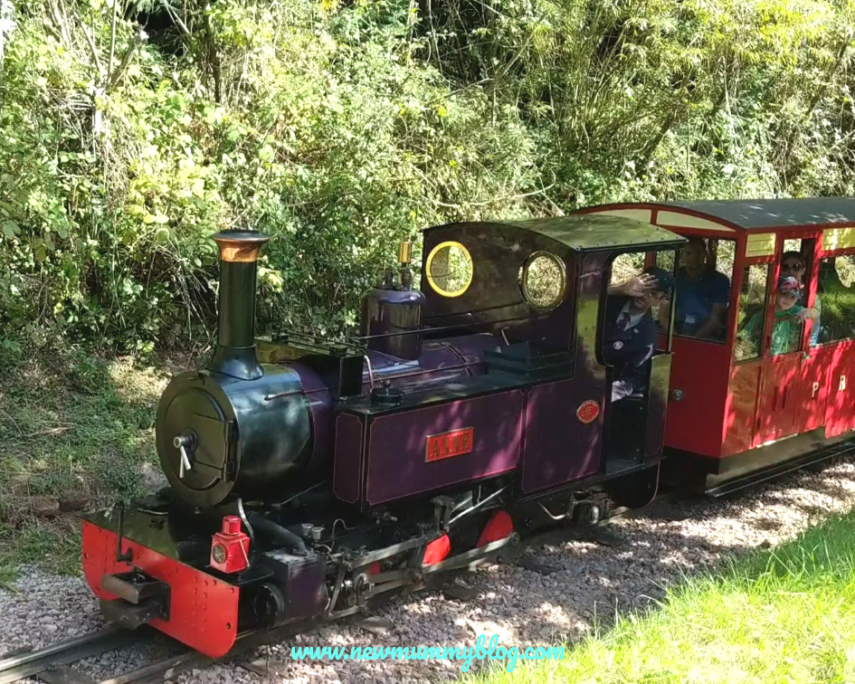 Perrygrove railway review family day out Gloucestershire Forest of Dean