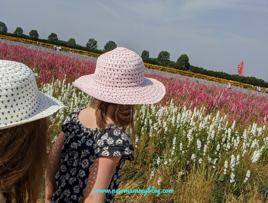 Visiting the Confetti Flower Field, Wick, Pershore, Worcestershire near Evesham. August 2020 social distancing post lockdown.