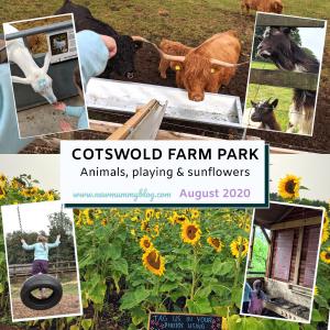 Cotswold farm park review reopen