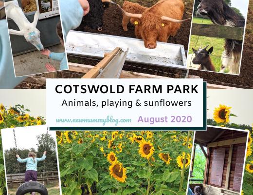 Cotswold Farm Park review