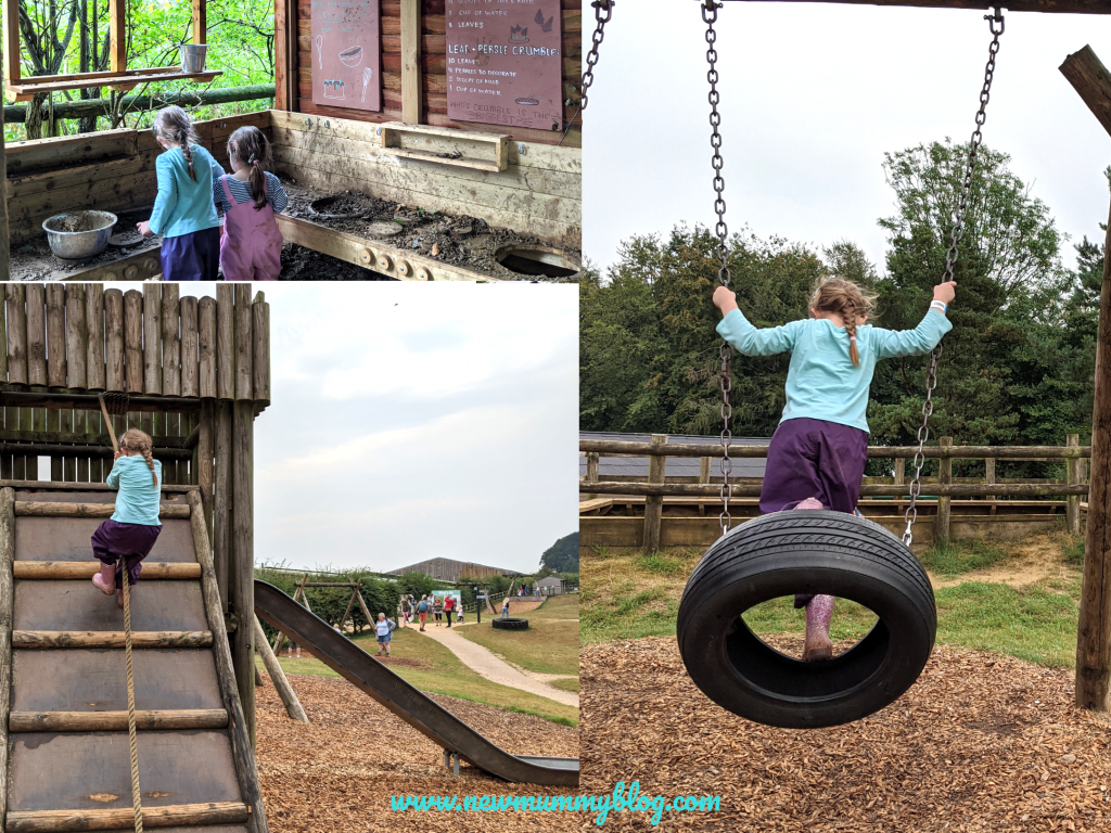 Cotswold Farm Park fun all day