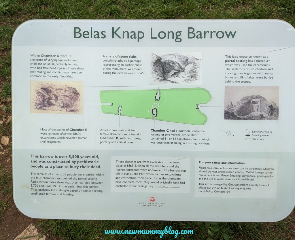 Bela's Knap long barrow, Winchcombe, near Cheltenham. Fun family day out near Cheltenham. Walks around Gloucestershire. Exploring the long barrow.